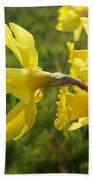 Spring Meadow Field Daffodil Flowers Beach Towel