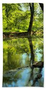 Spring Mill Reflections Beach Towel
