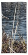 Spring Morning At The Marsh Beach Towel