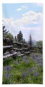 Spring Mountain Lupines 2 Beach Sheet