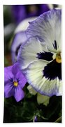 Spring Pansy Flower Beach Towel