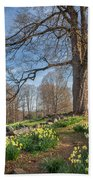 Spring Path Beach Sheet