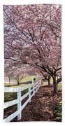 Spring Pink Beach Towel