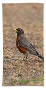 Spring Robin 2014 Beach Towel