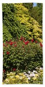 Spring Roses Beach Towel