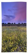 Spring Storm At Andalucia Beach Towel