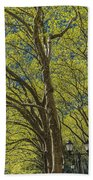 Spring Time In Bryant Park New York Beach Towel by Angela A Stanton