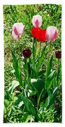 Spring Tulips Beach Towel