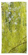 Spring Weeping Willow Beach Towel