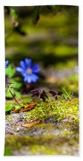 Spring Wild Flowers Beach Towel