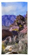 Spring Wildflowers At Anza Borrego Beach Towel