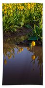 Springs Reflection Beach Towel