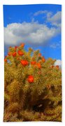 Springtime In Arizona Beach Towel