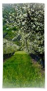 Springtime In The Orchard Beach Towel by Bill Gallagher