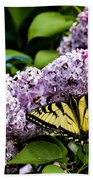 Springtime Lilac And Butterfly Beach Towel