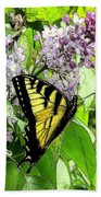 Springtime Moments- The Butterfly And The Lilac  Beach Towel