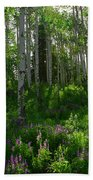 Springtime On The Grand Mesa Beach Towel
