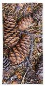 Spruce Cones Beach Towel