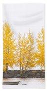 Square Diptych Tree 12-7693 Set 1 Of 2 Beach Towel