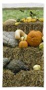Squash Gourds And Pumpkins Beach Towel