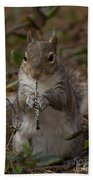 Squirrel With His Obo Beach Towel