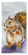 Squirrel With Nut Beach Towel
