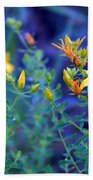 St John's Wort In The Forest Beach Towel