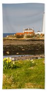 St Marys Lighthouse With Daffodils Beach Towel