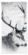 Stag In Black And White Beach Towel