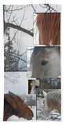 Stallions Collage There Is A Connection Beach Sheet