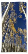 Standing Tall  Beach Towel