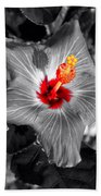Star Bright Hibiscus Selective Coloring Digital Art Beach Towel