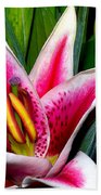Star Gazer Lily Beach Towel