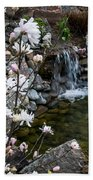 Star Magnolia And Flowing Water Beach Towel