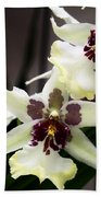 Star Orchids Beach Towel