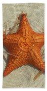 Starfish 1 Of Bottom Harbour Sound Beach Towel
