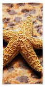 Starfish Enterprise Beach Towel by Andee Design