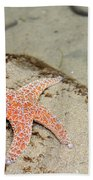 Starfish Underwater Beach Towel