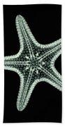 Starfish X-ray Beach Towel