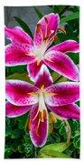 Stargazer Oriental Lilies Beach Towel