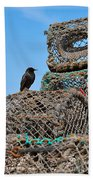 Starling On Lobster Pots Beach Towel