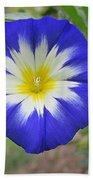 Starry Blue Enchantment Beach Towel