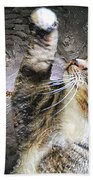 Starry Night Kitty Style - Featured  In Comfortable Art Group Beach Towel