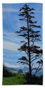 Stately Pine Beach Towel