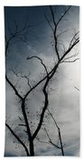 Steal Trees Beach Towel