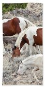 Steens Wild Paints Beach Towel
