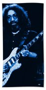 Stella Blue At Winterland Beach Towel