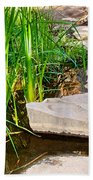 Stepping Stones Across Creek On Lower Palm Canyon Trail In Indian Canyons Near Palm Springs-ca Beach Towel