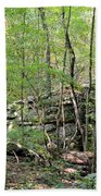 Sticks And Stones Along The Way Beach Towel