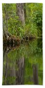 Stillness Swamp Beach Towel